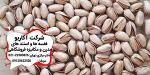 پسته اکبری