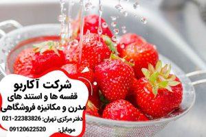 شستن توت فرنگى
