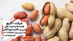 مواد مغذى موجود در آجيل بادام زمینی