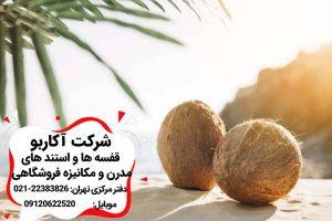 میوه نارگیل