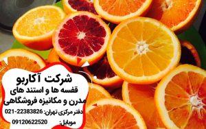 انواع پرتقال